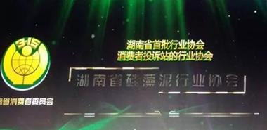 湖南省硅藻泥行业协会正式成立消费者投诉站
