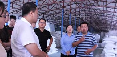 敬畏市场 ︱勇做硅藻泥行业的一股清流