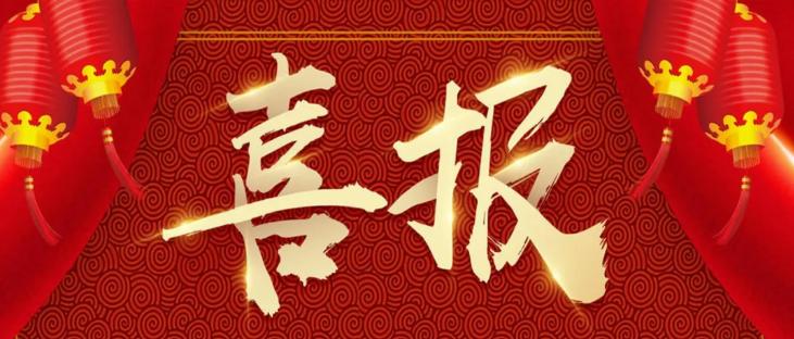 """喜报丨洛迪科技蝉联""""中国房地产企业500强环保涂料硅藻泥类首选品牌"""""""
